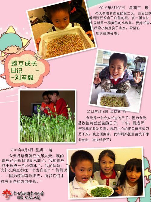 小学科技手工制作豆子作品